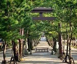 出雲大社 松の参道と三の鳥居