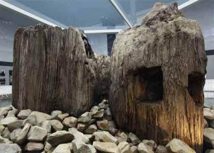 古代出雲歴史博物館に展示されている発掘された宇豆柱