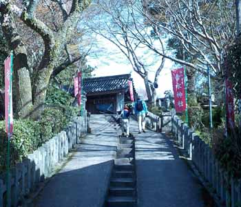 𠮷水神社への上り坂