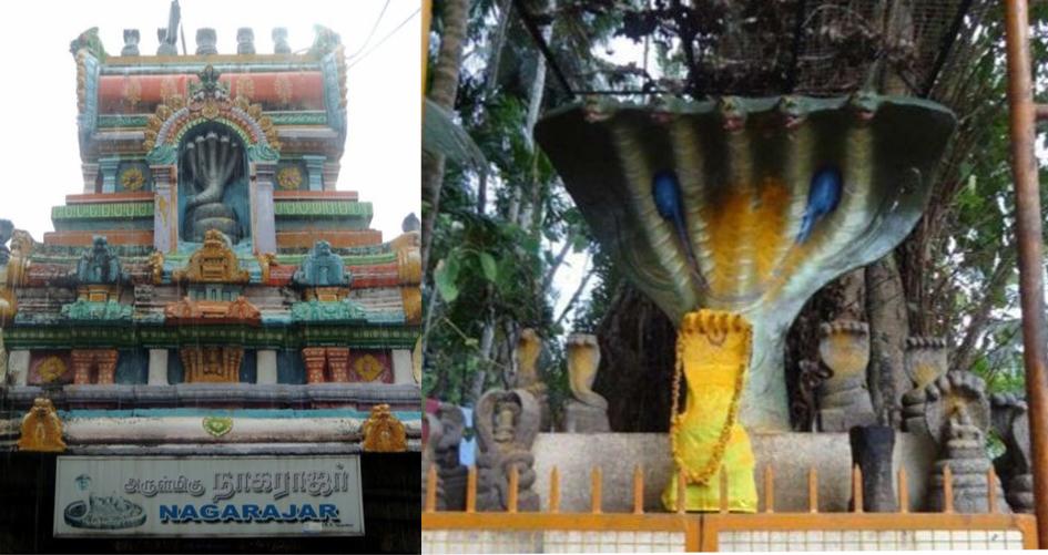 インドで祀られているナーガラージャ