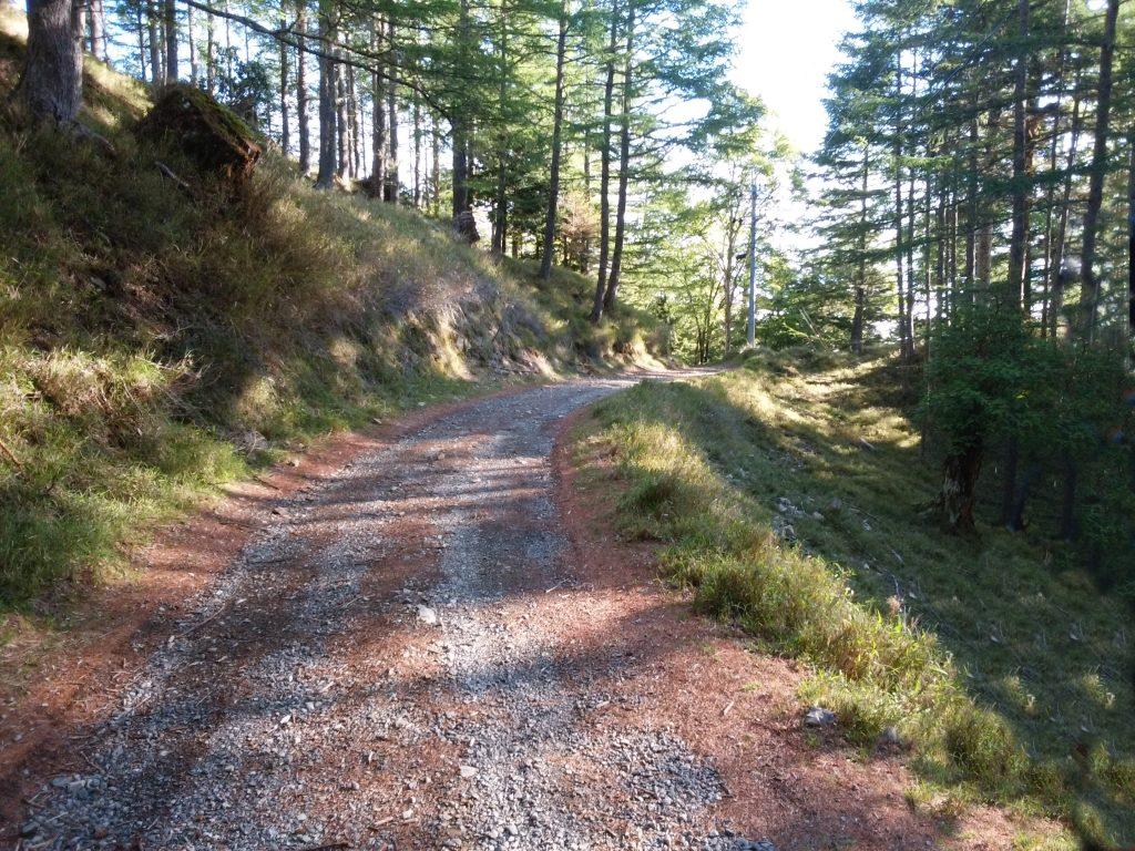 奥之院への道