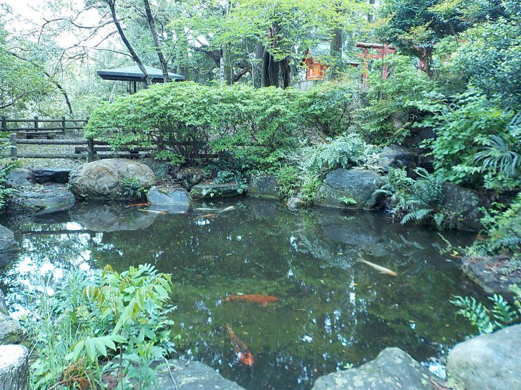 日本寺「七面池」